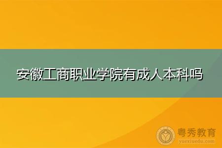 安徽工商职业学院有成人本科吗