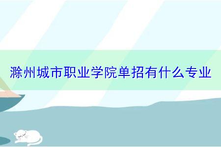 滁州城市职业学院单招有什么专业