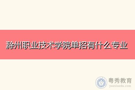 滁州职业技术学院单招有什么专业