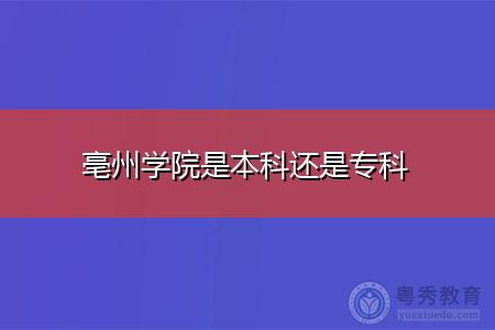 亳州学院、成都师范学院和宁德师范学院是本科大学吗