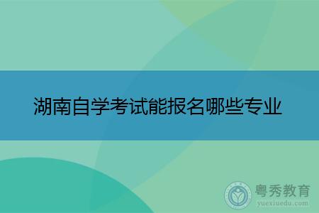 湖南自学考试能报名哪些专业