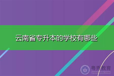 云南省专升本的学校有哪些?