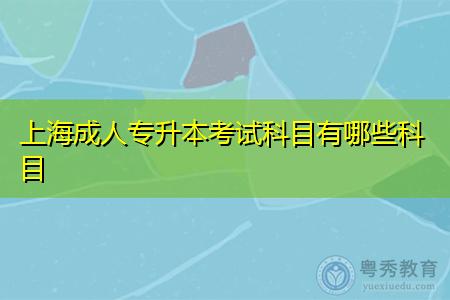 上海成人专升本考试科目和学习形式有哪些