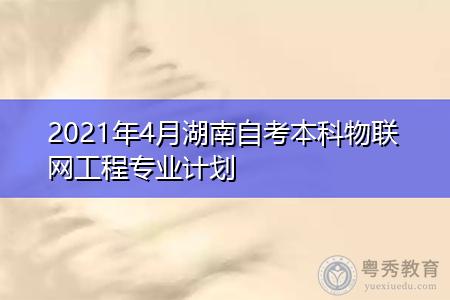 2021年4月湖南自考本科物联网工程专业计划