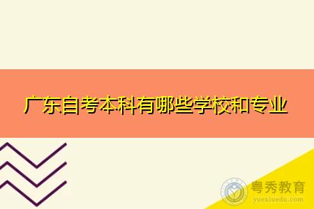广东自考本科有哪些学校和专业?