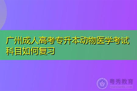 广州成人高考专升本动物医学考试科目如何复习,学习方式和方法有哪些?