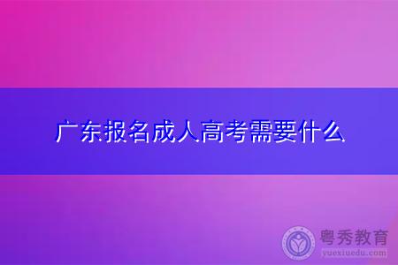 广东报名成人高考需要什么,报考时间在什么时候?