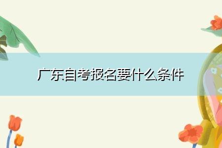广东自考报名要什么条件,学历有用吗,国家承不承认?