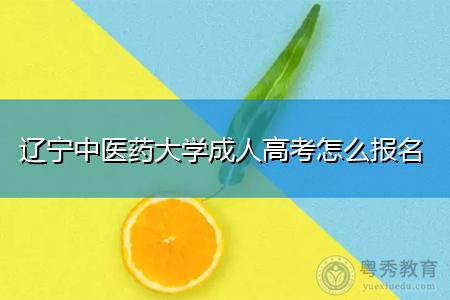 辽宁中医药大学成人高考报名流程和招生目标是什么?
