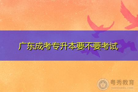 广东成考专升本要不要考试,学位英语考试要交多少费用?