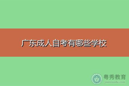 广东成人自考有哪些学校,选择专业该注意什么?