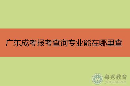 广东成考报考专业能在哪里查询,考生如何选择适合的专业报考?