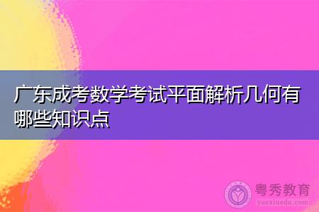 广东成考数学考试平面解析几何有哪些知识点?
