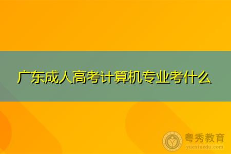 广东成人高考计算机专业考什么科目,有哪些计算机专业可以报考?