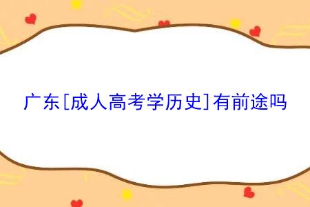 广东成人高考学历史有前途吗,该专业就业前景如何?