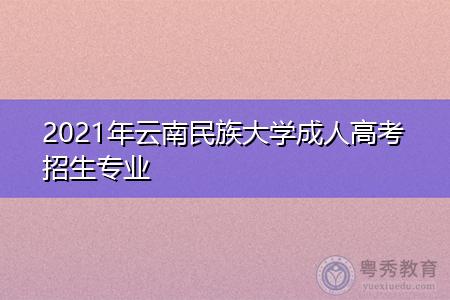 2021年云南民族大学成人高考招生专业都有哪些?