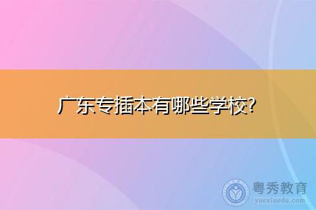 广东专插本有哪些学校可选择报考?