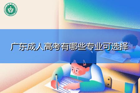 广东成人高考有哪些专业可选择报考?