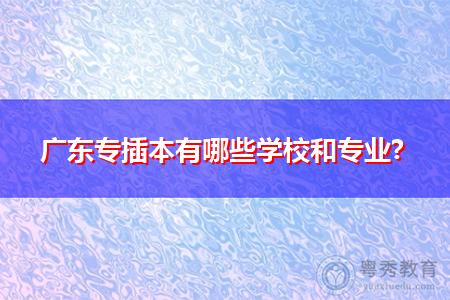 广东专插本有哪些学校和专业?