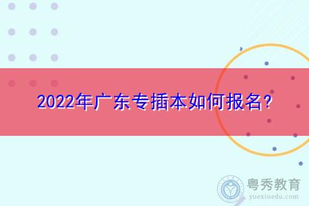 2022年广东专插本如何报名,录取批次和类别是怎样设置的?