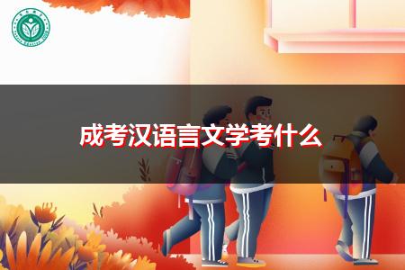 成考汉语言文学考什么科目?