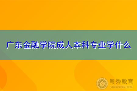 广东金融学院成人本科专业有哪些课程要学?