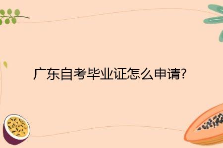 广东自考毕业证怎么申请,现场审核需要什么材料?