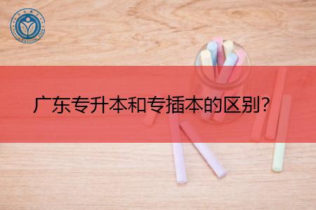 广东专升本和专插本的本质区别是什么?
