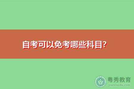 自考可以免考哪些科目,申请流程是怎样的?