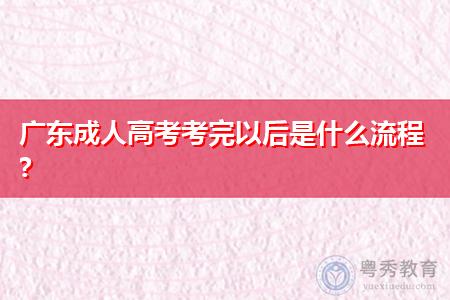 广东成人高考考完后怎么查询考试成绩?
