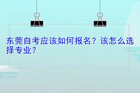 东莞自考应该如何选择专业报名?