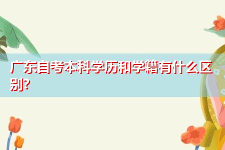 广东自考学历和学籍有什么区别,在学信网上查的到吗?