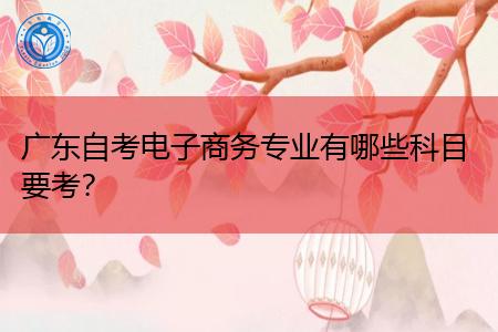广东自考(本科/专科)电子商务专业都有哪些科目要考?
