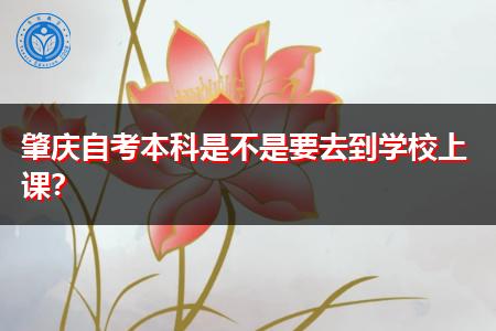 肇庆自考本科要到学校上课吗,学制要多久能拿文凭?