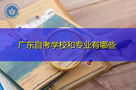 广东自考可选的学校和专业都有哪些?
