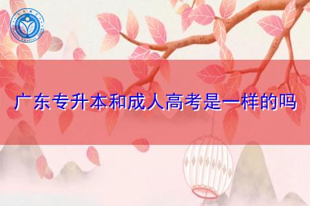 广东专升本和成人高考是一样的吗,取得的学历国家承认吗?