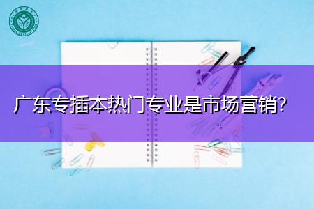 广东专插本市场营销是热门专业吗,就业率高不高?